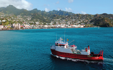 Saint Vincent and the Grenadines Company Formations